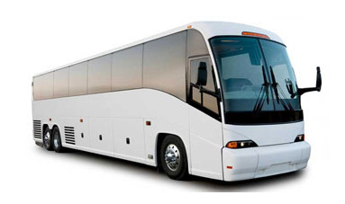 55 pax coach bus